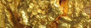 gold1.jpg