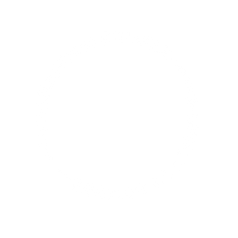 Transform People, Engage Culture -- thin.png