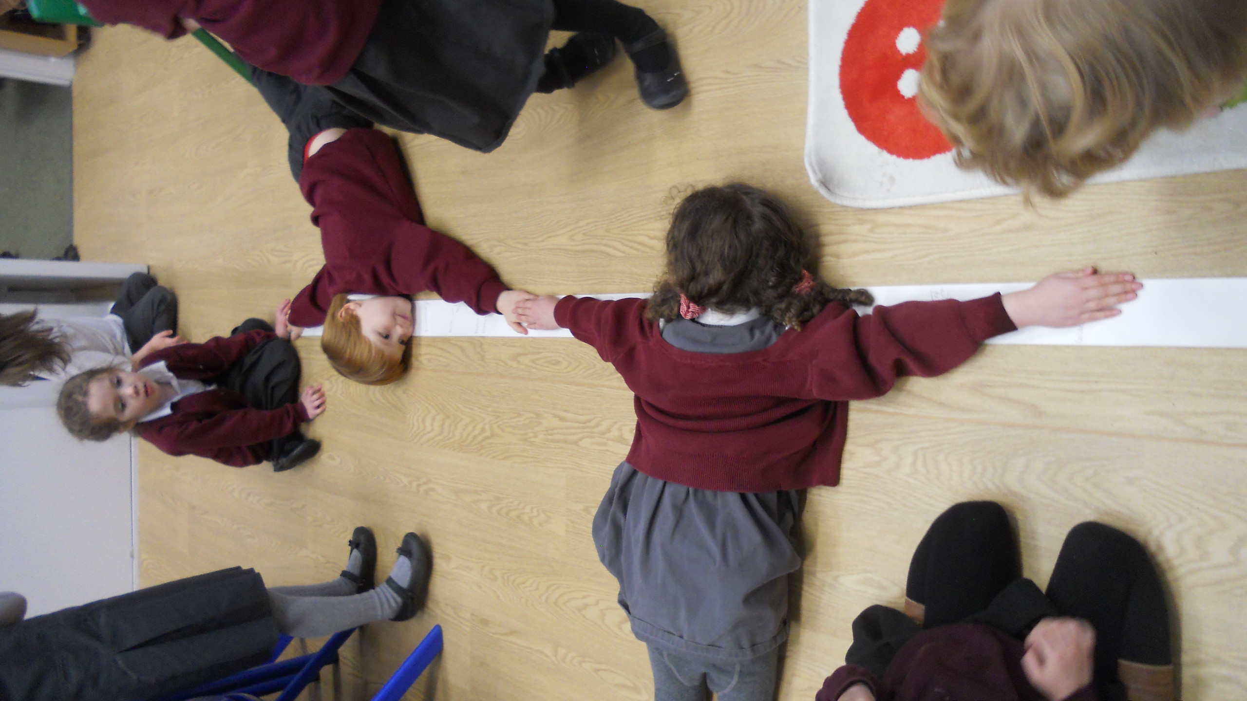 comparing arm and wing spans