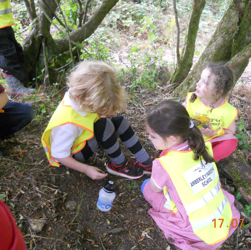 welly walk with Hereford (18)
