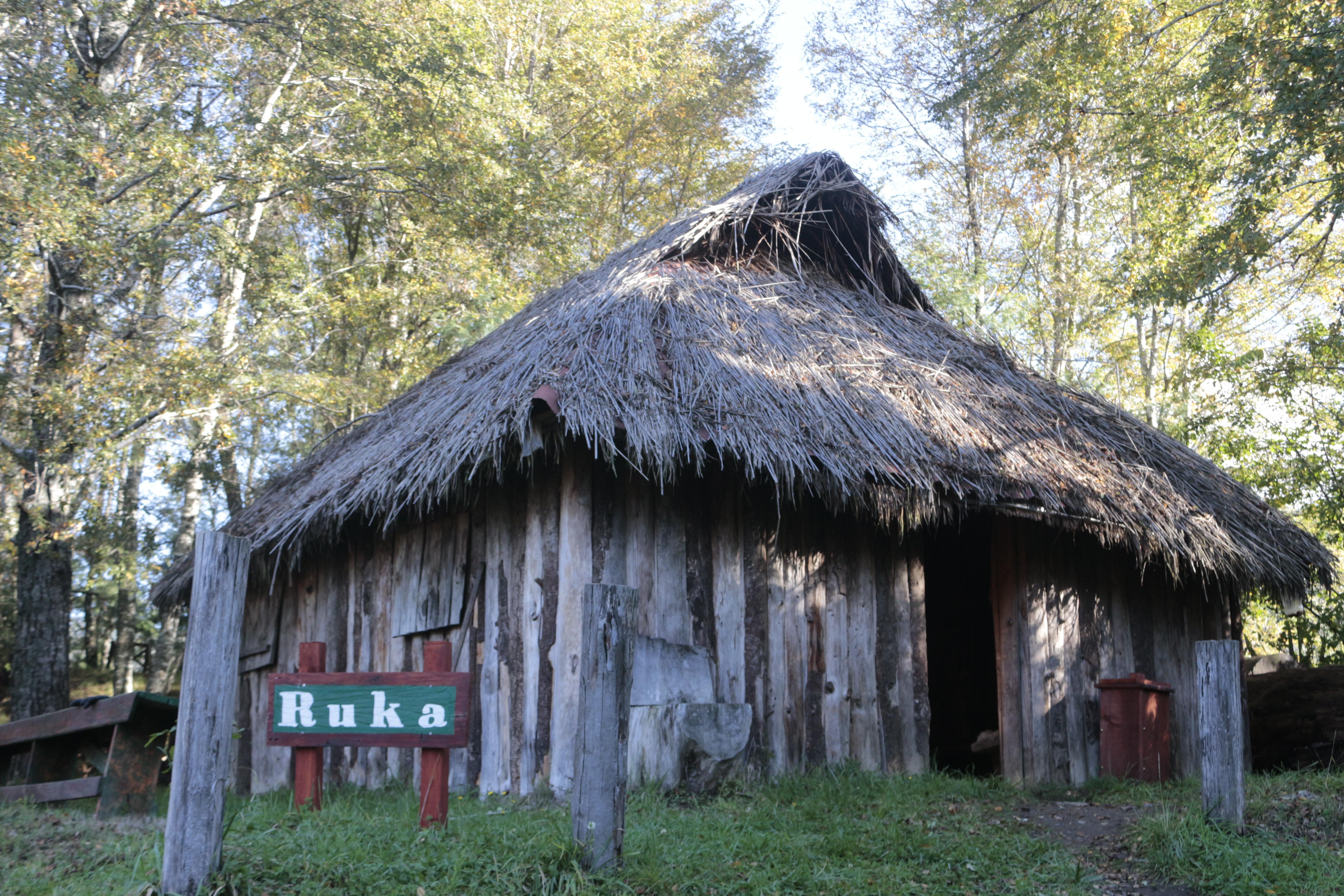 Ruca_mapuche,_turismo_Lawenko,_comuna_de_Purén