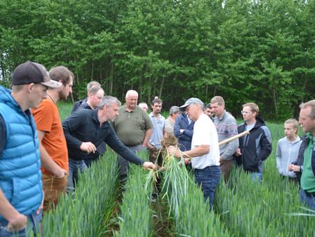 Das Bodenallianz-Mehl aus dem Pfaffenhofener Land