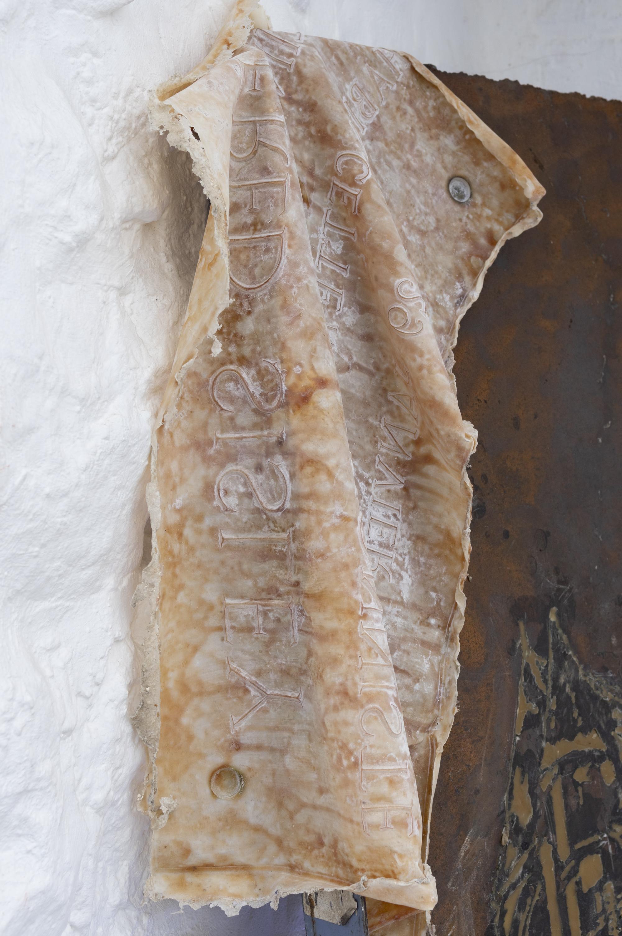 La peau de Sisley (détail), 2019