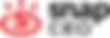 snapCEO_logo_002.png