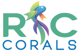 RCcorals_StackedLogo_color_small.png