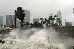 tropicalstorm.jpg