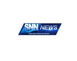 76-768950_SNN news-icon-png.png