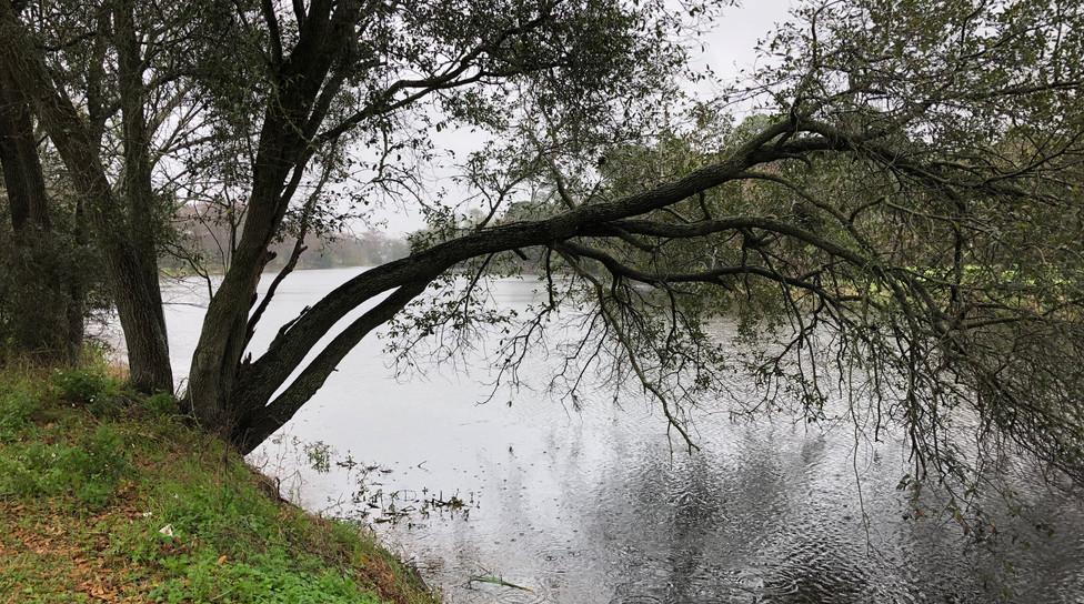 Lacs partout