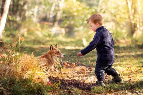 barnfotograf, barnbild, sagofotografering, fotograf hovmantorp, fotograf växjö, fotograf kalmar, räv, barn i skogen, fotograf erika gülich