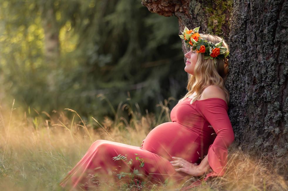 gravid, gravidfotografering, fotografera gravid, gravidklänning, mammaklänning, gravidkläder, fotograf erika gülich, fotograf hovmantorp, fotograf växjö, fotograf kalmar, fotograf småland, gravidfotograf växjö, gravidfotograf lessebo, gravidfotograf alvesta, gravidfotograf tingsryd, gravidfotograf emmaboda, gravidfotograf åseda