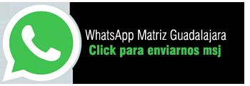 WhatsApp_GUADALAJARA.png