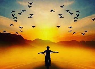Somos Livres