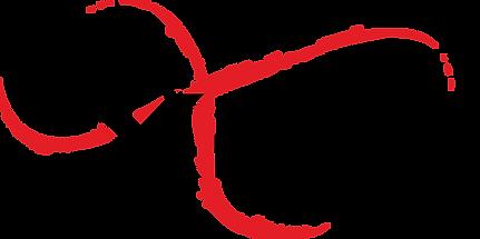 Logo XPN Original.png