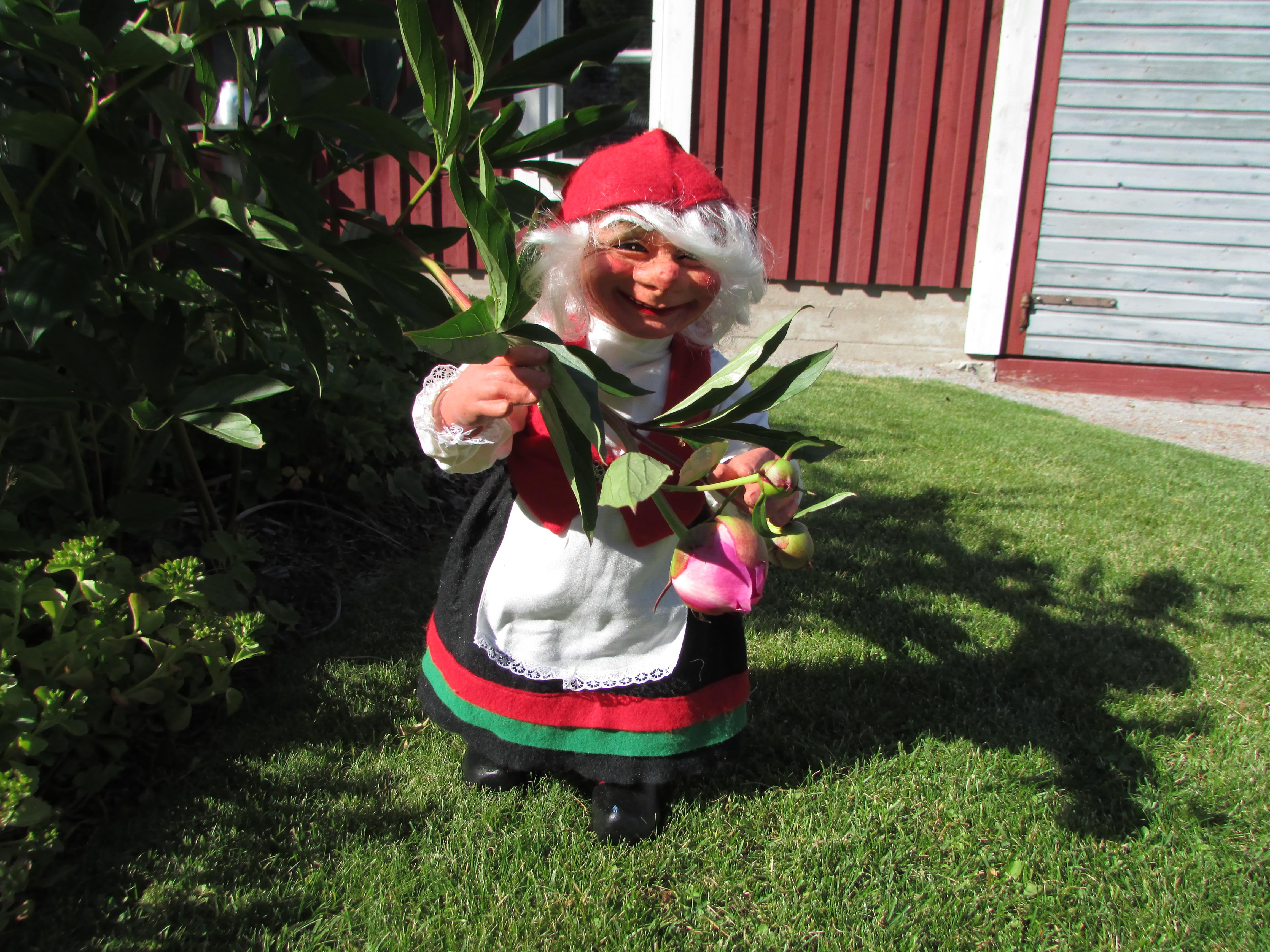 Santa Claus Museum | Flowers