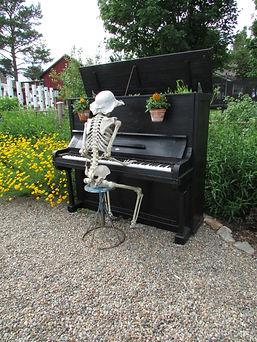 Piano, kosketinsoitin, tangetti, koskettimet, piano, pianopalla, kukkaruukku, musta piano, saviruukku, pianonsoittaja, musikantti,