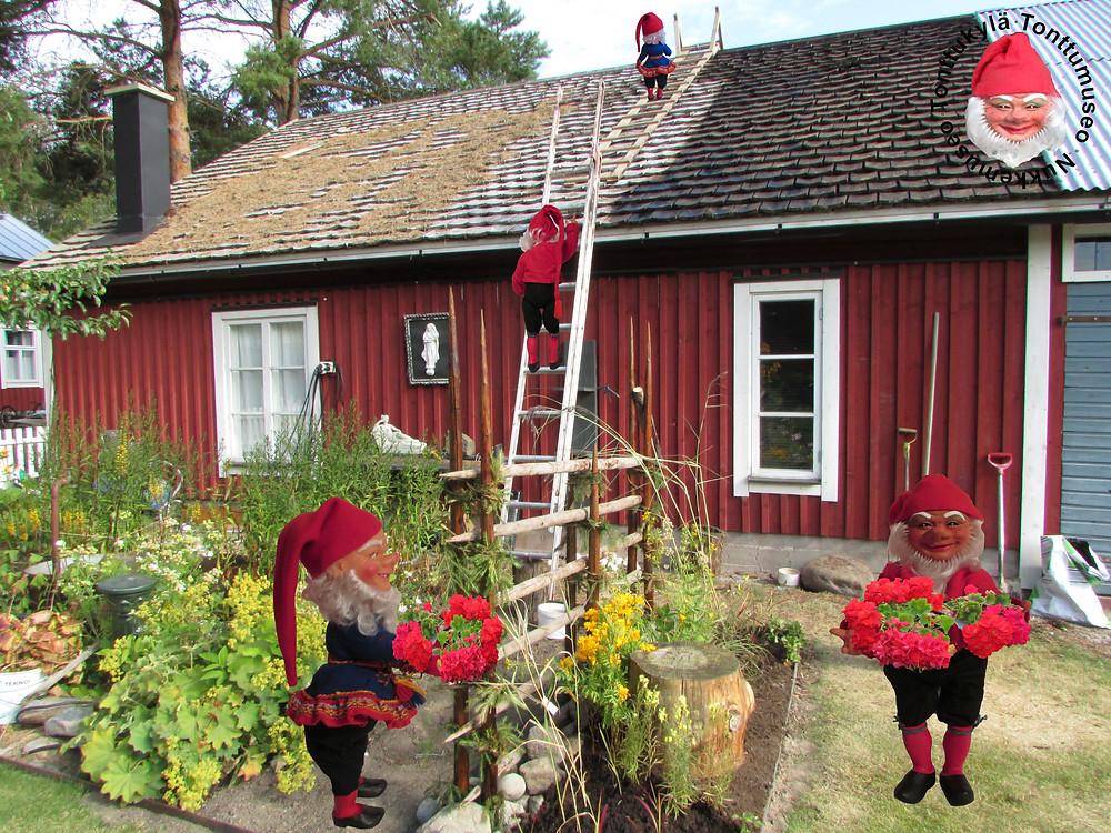 Tervaaminen, paanukatto, huoltotyöt, puutarha, piharakennus, perinteet