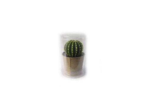 Kaktus pöytäkynttilä, elävännäköinen kynttilä, koristekynttilä, hahmokynttilä