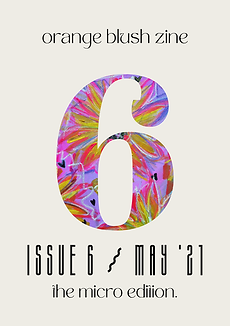 obz6 cover.png