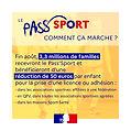passsportvignette3_jaune.jpg