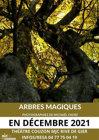 arbres magiques.jpg