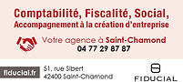 AP FIDUCIAL Saint Chamond - 45x21 - 06-2