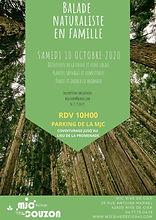 Ballade naturaliste 101020.jpg
