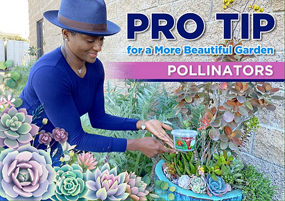 PRO TIP FOR A MORE BEAUTIFUL GARDEN POLL