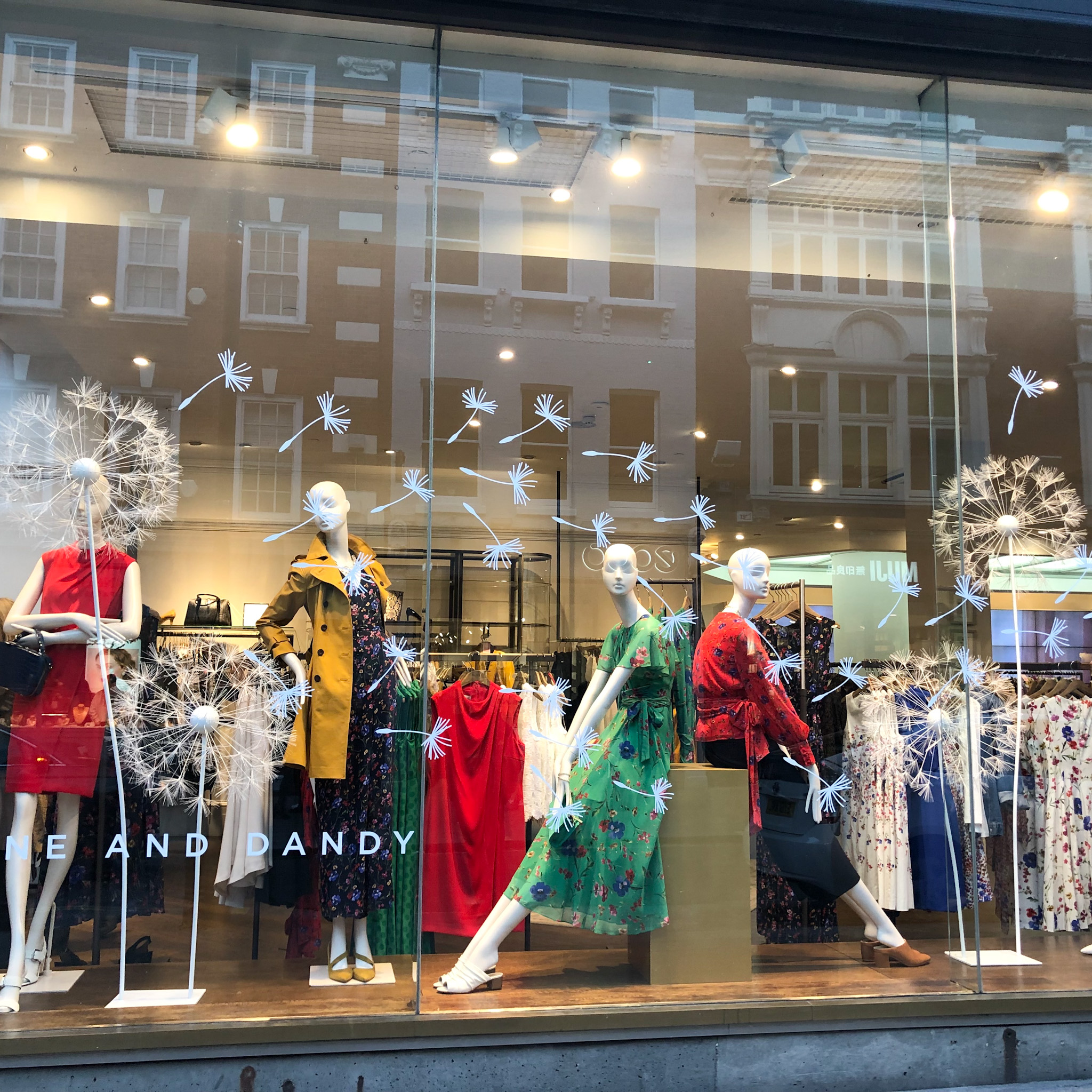 Giant Dandlelions window display