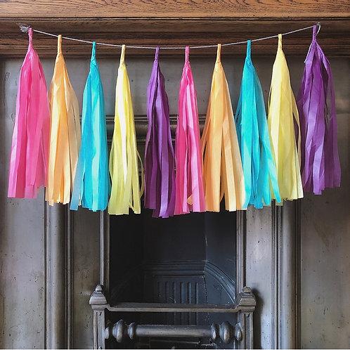 Rainbow brights tassel garland