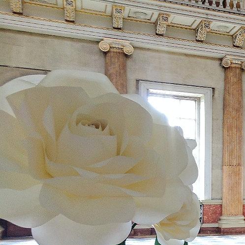 80cm Freestanding Rose