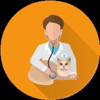icons_בדיקות רפואיות.png