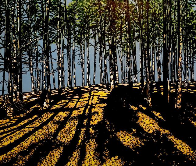 Beneath the woods