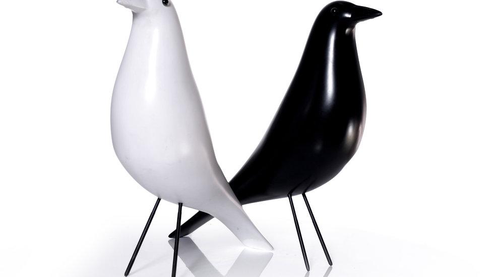 ציפור נוי איימס