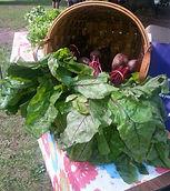 Beets at the market.jpeg
