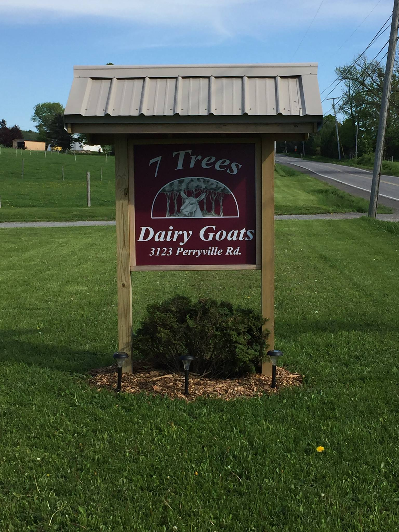 7 Trees Dairy Goats