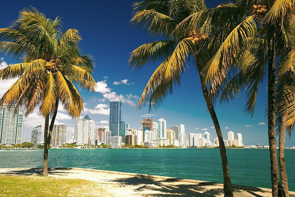 Miami2_edited.jpg