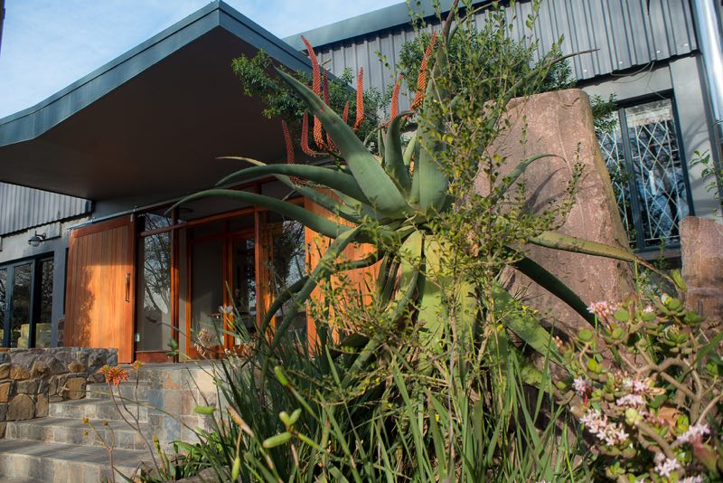 Entrance-Through-Aloes