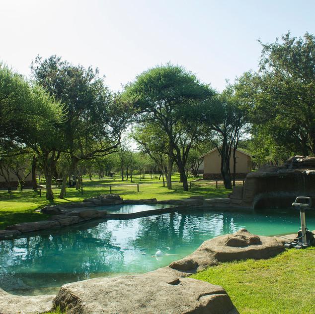 Caravan Park  - Pool Area.jpg