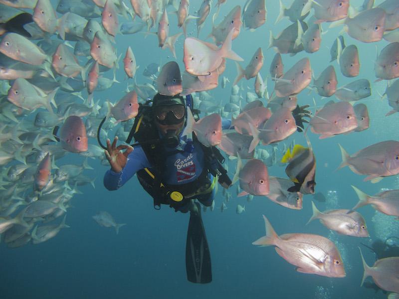 Dive-Charter-Coral-Divers-Sodwana-Bay-Dive-Leader