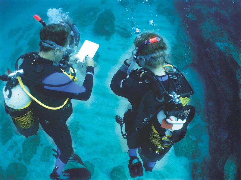 PADI-Advanced-Course-Coral-Divers-Sodwana-Bay-1
