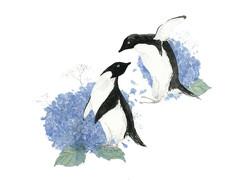 Penguins and Hydrangeas