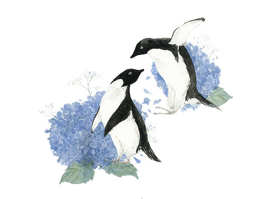 Penguins and Hydrangeas
