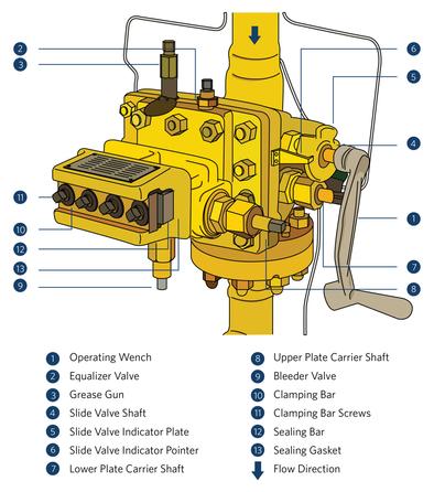 Coursepack illustration
