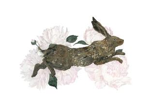 Hare and Peony