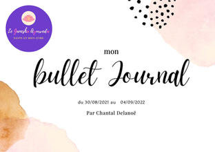 Mon Bullet Journal - 19,20€ au lieu de 24€