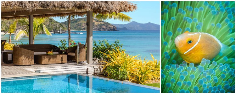 Travel to Fiji - island paradise with pool and exotic fish