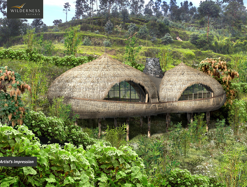 Exclusive travel adventure to Bisate Lodge, Volcanoes National Park, Rwanda