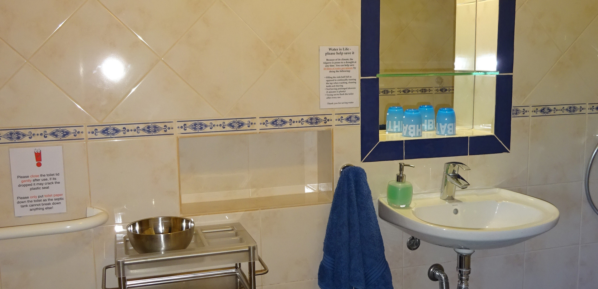 Sink and mirror with moveable trolley for carers