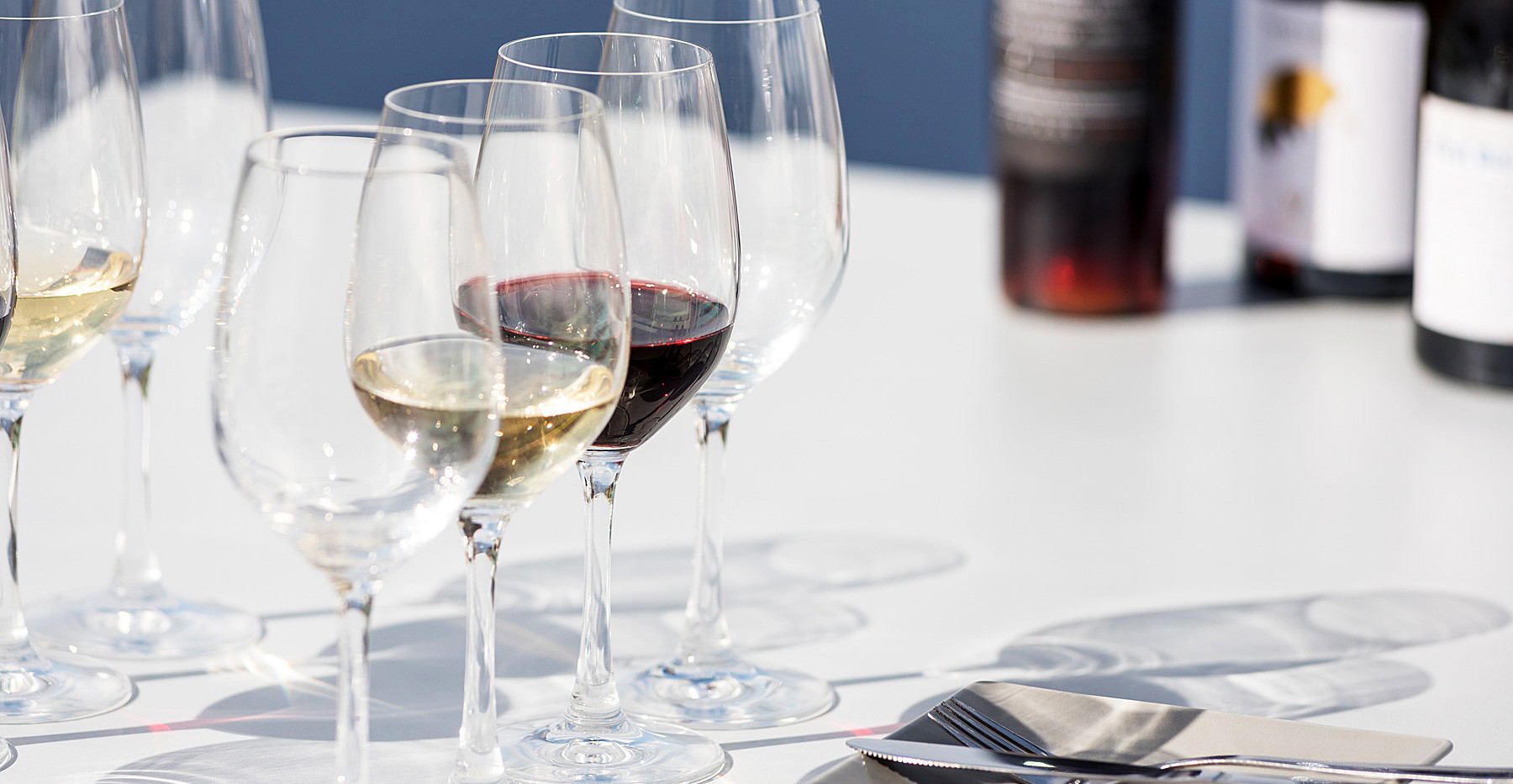 4. santorini wine roads.jpg