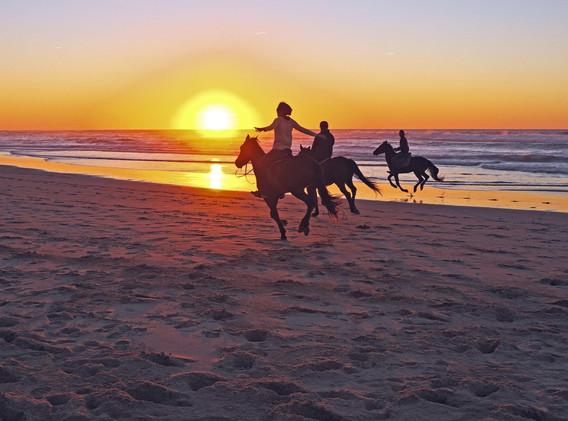Horseback riding Mykonos.jpg
